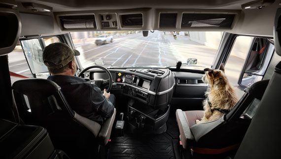 Volvo Truck Driver With Dog